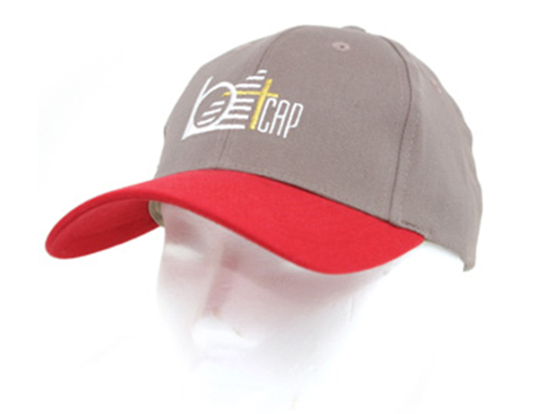 Bt180 High profile cap (Canvas)