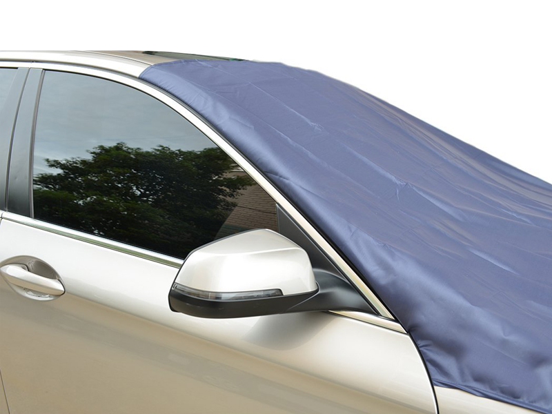 Windshield cover (Custom made)